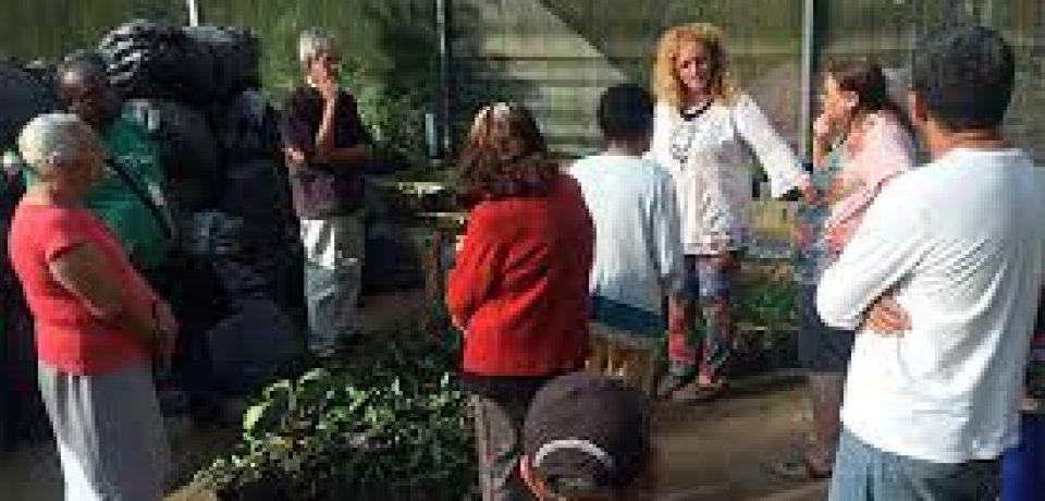 Ilhabela diversifica atividades com idoso